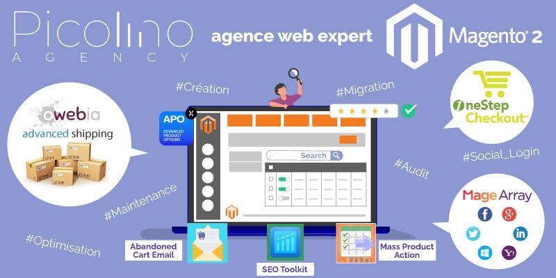 Agence Web expert en solution e-commerce Magento 2