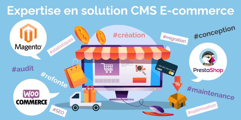 Expertise E-commerce