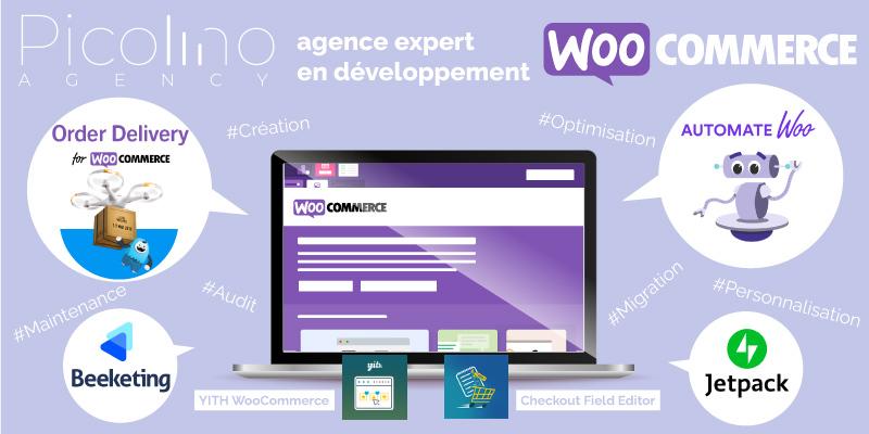 Agence web expert en solution e-commerce WooCommerce: implémentation, paramétrage, développement, audit, maintenance